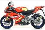 LIGNE COMPLETE ARROW MINI THUNDER TITANE APRILIA RS 125 (2007/2014)